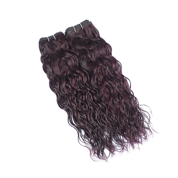 Vvwig Grape Purple Water Wave Bundles Double Weft Virgin Human Hair 2 Bundles No Shedding Soft Ends - Vvwig.com